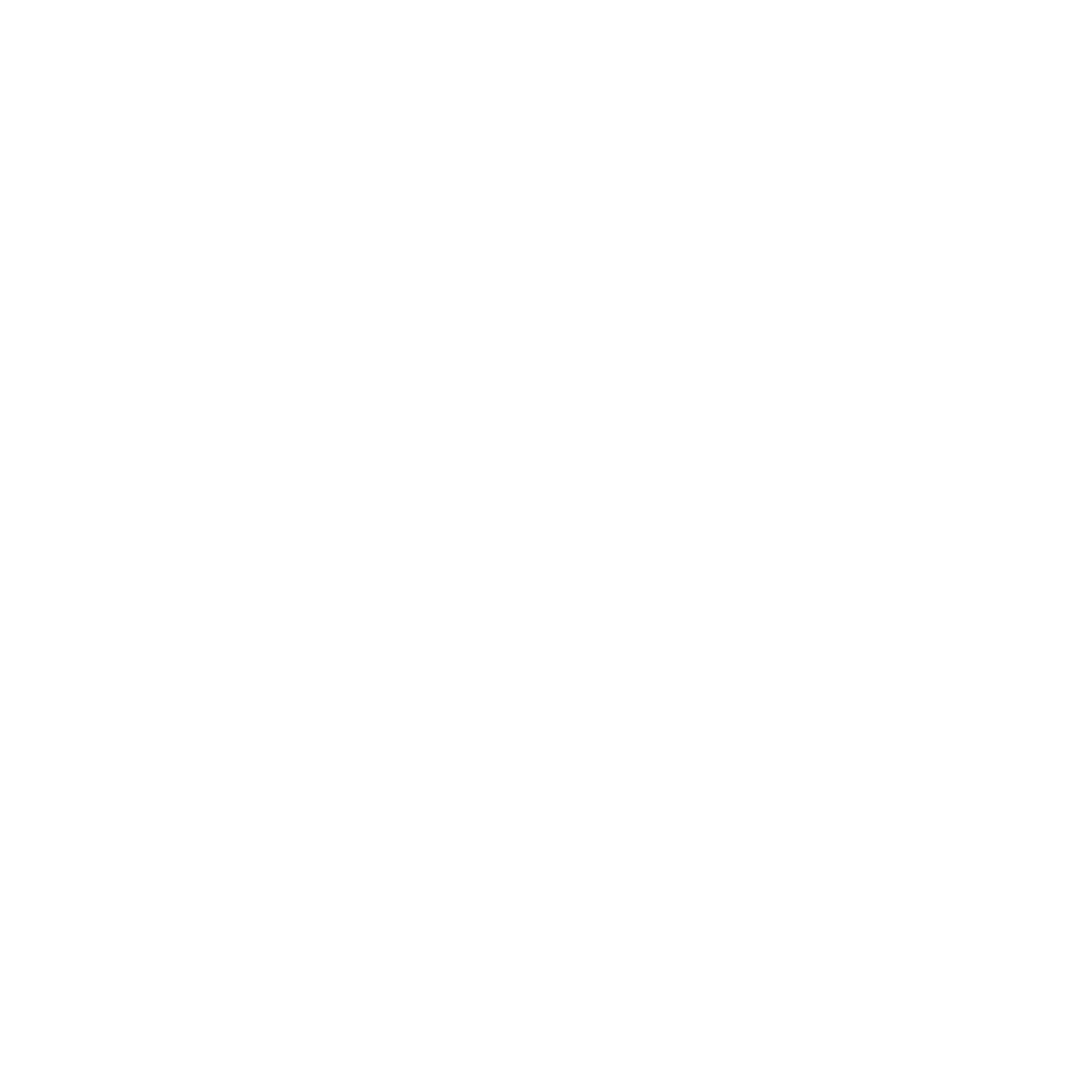 Die TauernBuam Logo - White CutOut
